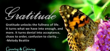 Gratitude-Quote-520x245
