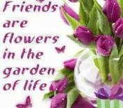 flowers are friends